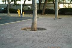 EM-Reviews_Camara_de_Caza_12MP_HD_para_Vigilancia_5210A_BESTOK6353
